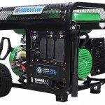 TPP-4500DF-A Generator 1